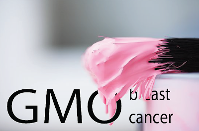 GMO-Breast Cancer About