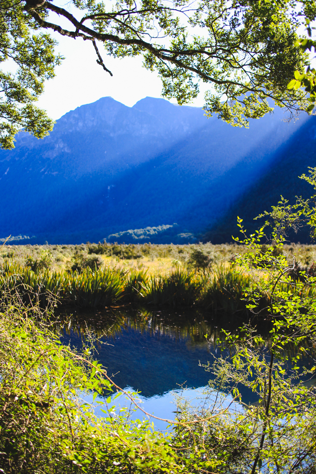 Mirror Lakes | the road to Milford Sound, Fiordland, New Zealand