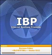 Internet Business Promoter 12.0.2