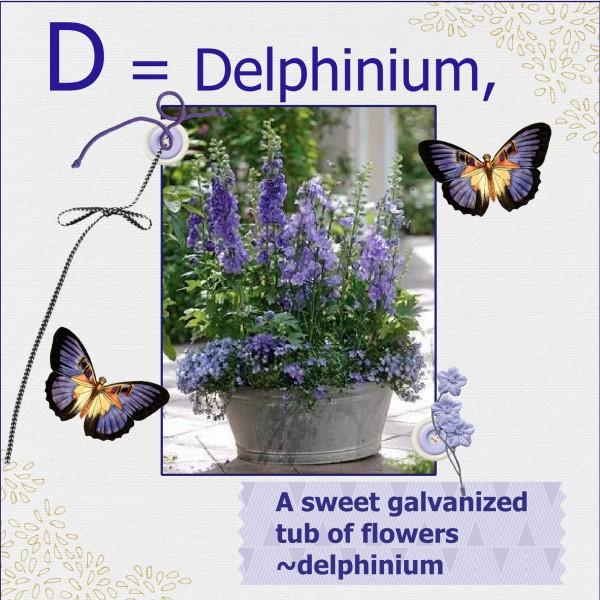 April 2016 - D = Delphinium,
