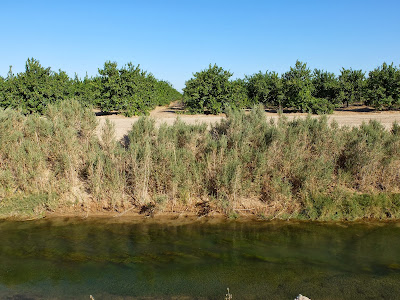 Different Irrigation Ditches in Northern Imperial Valley