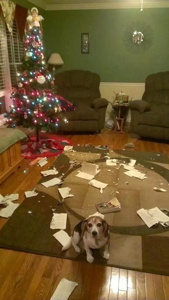Ohh .... Merry Christmas