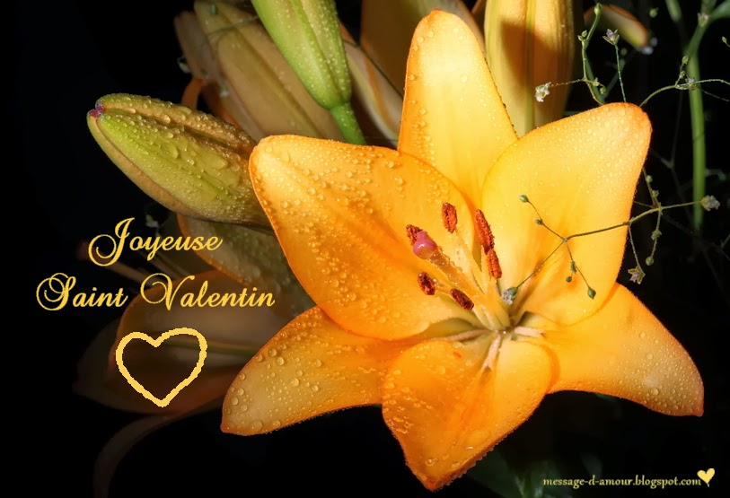 Cartes de saint valentin message d 39 amour - Jolie carte st valentin gratuite ...