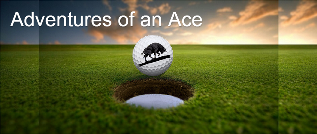 Adventures of an Ace