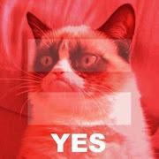 Grumpy Cat meme.