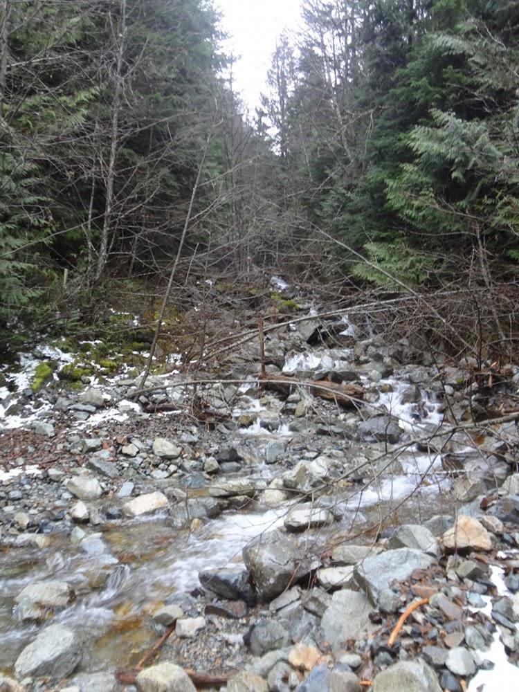 Magnesia Creek on the trail towards Brunswick Mountain