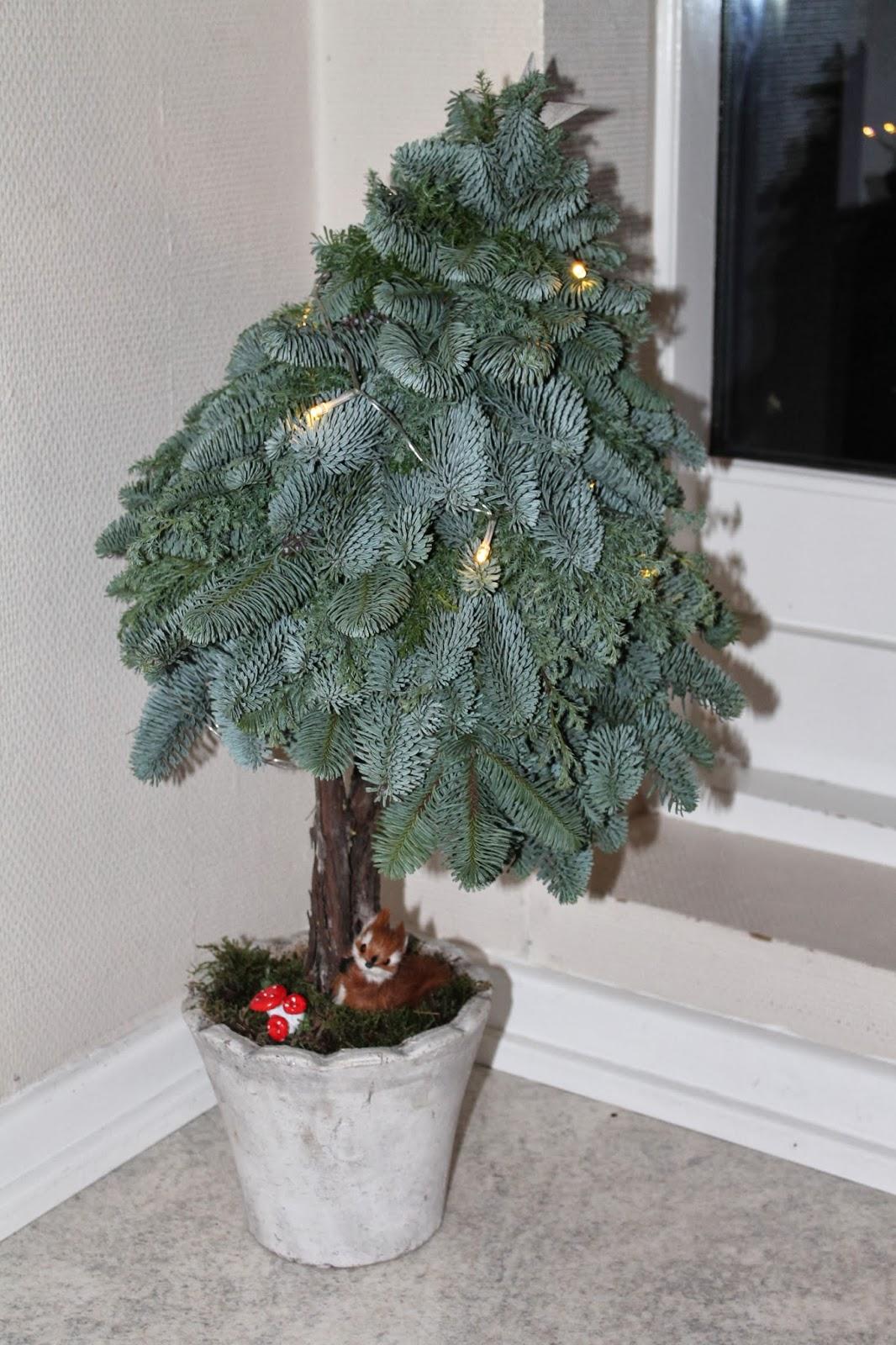 små juletræer