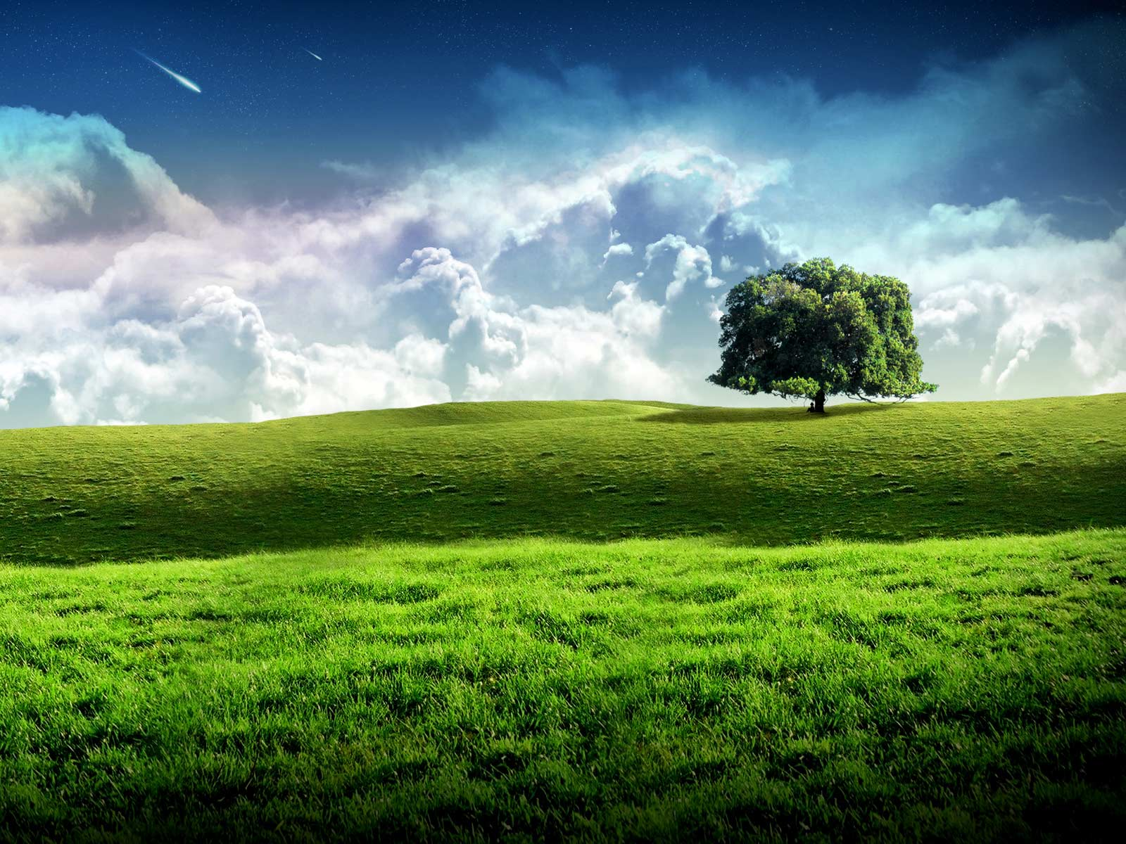 wallpapers nature which -#main