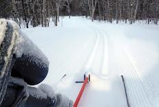 Maasto Hiihto Groomers' Trail Report: Feb. 19