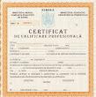 Diplome de INFIRMIERE cu recunoastere internationala!
