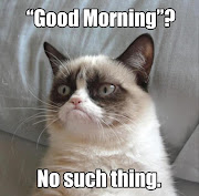 Friday FunniesGrumpy cat edition