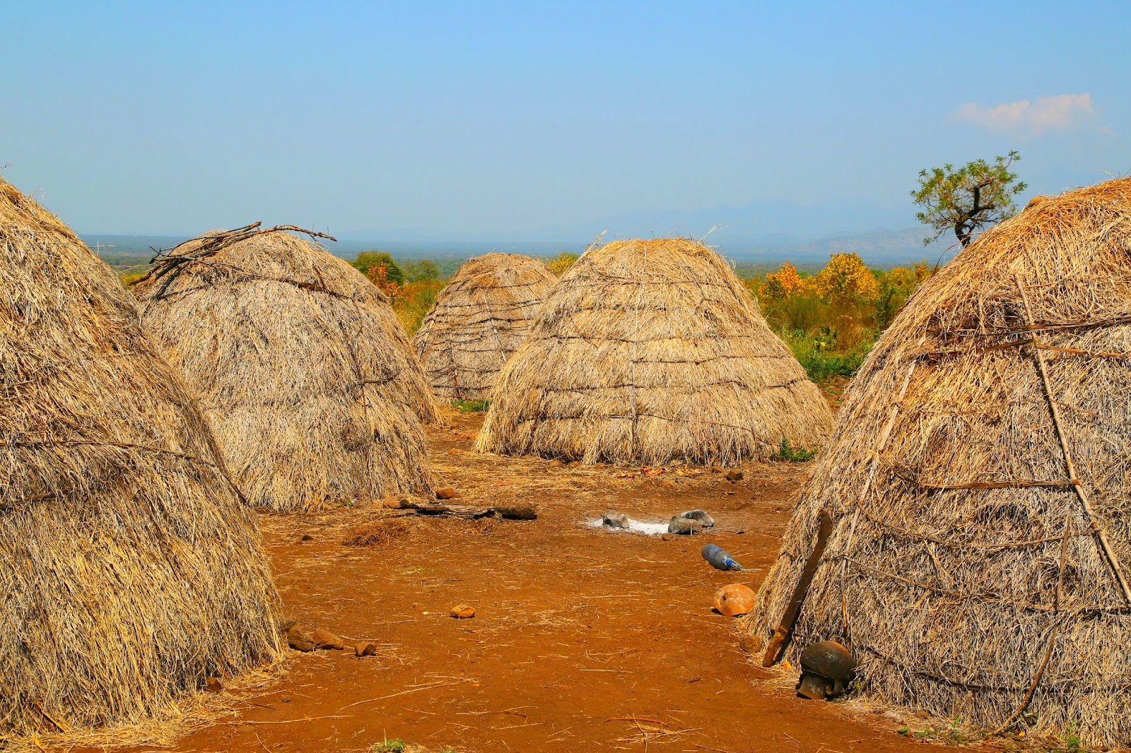 Grass Mursi Huts in the Lower Omo Valley