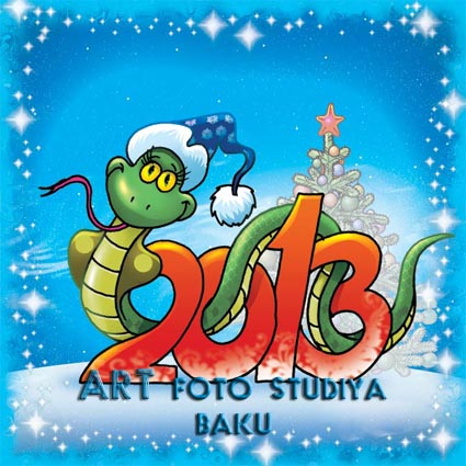 """Yeni il 2013"""""""