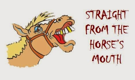 Straight From the Horse's Mouth! Real  Life Idiom Stories From ESL/EFL Students and Teachers