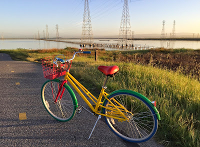 Bike on the Bay Trail