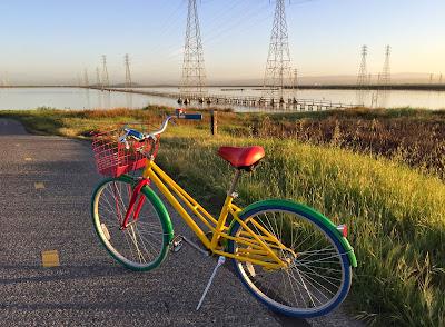 Bike on the Bay Trail