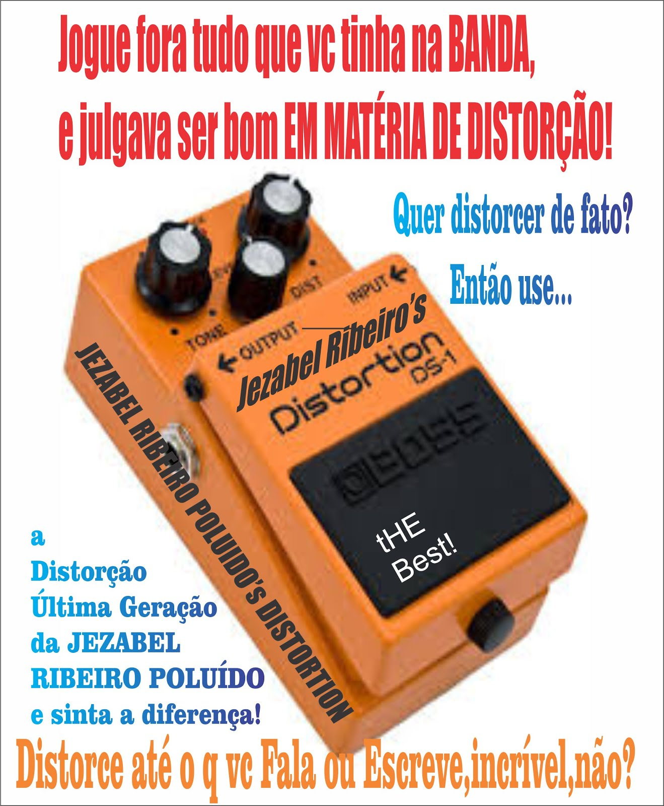 JEZABEL RIBEIRO POUIDO'S DISTORTION