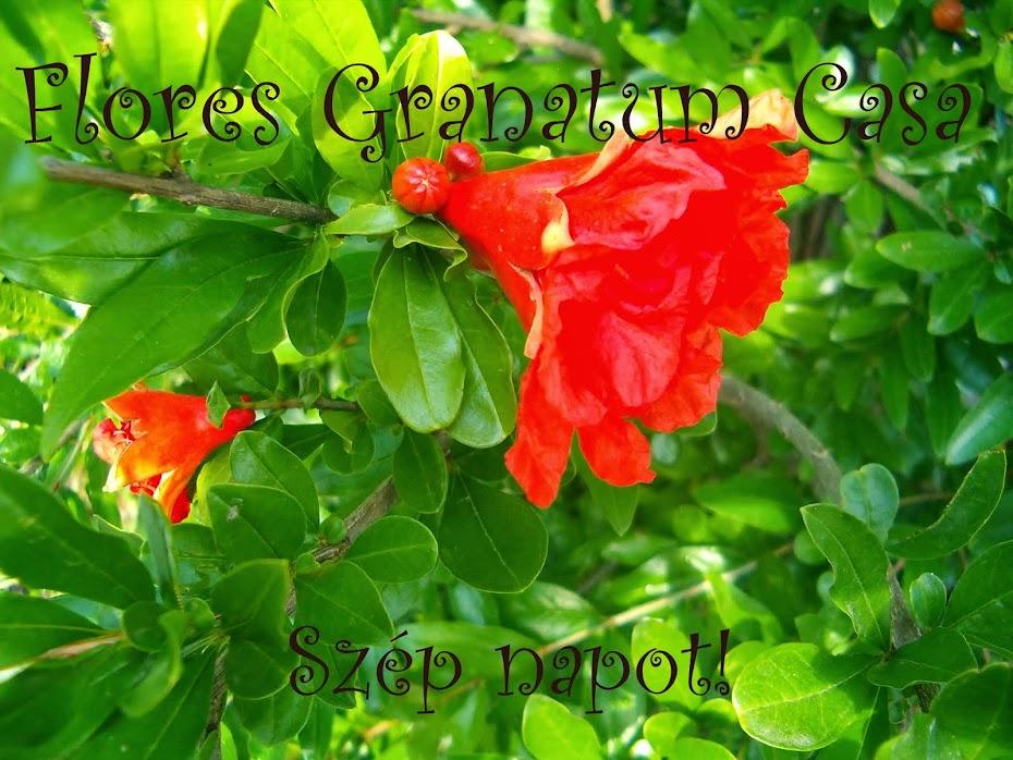 Flores Granatum Casa