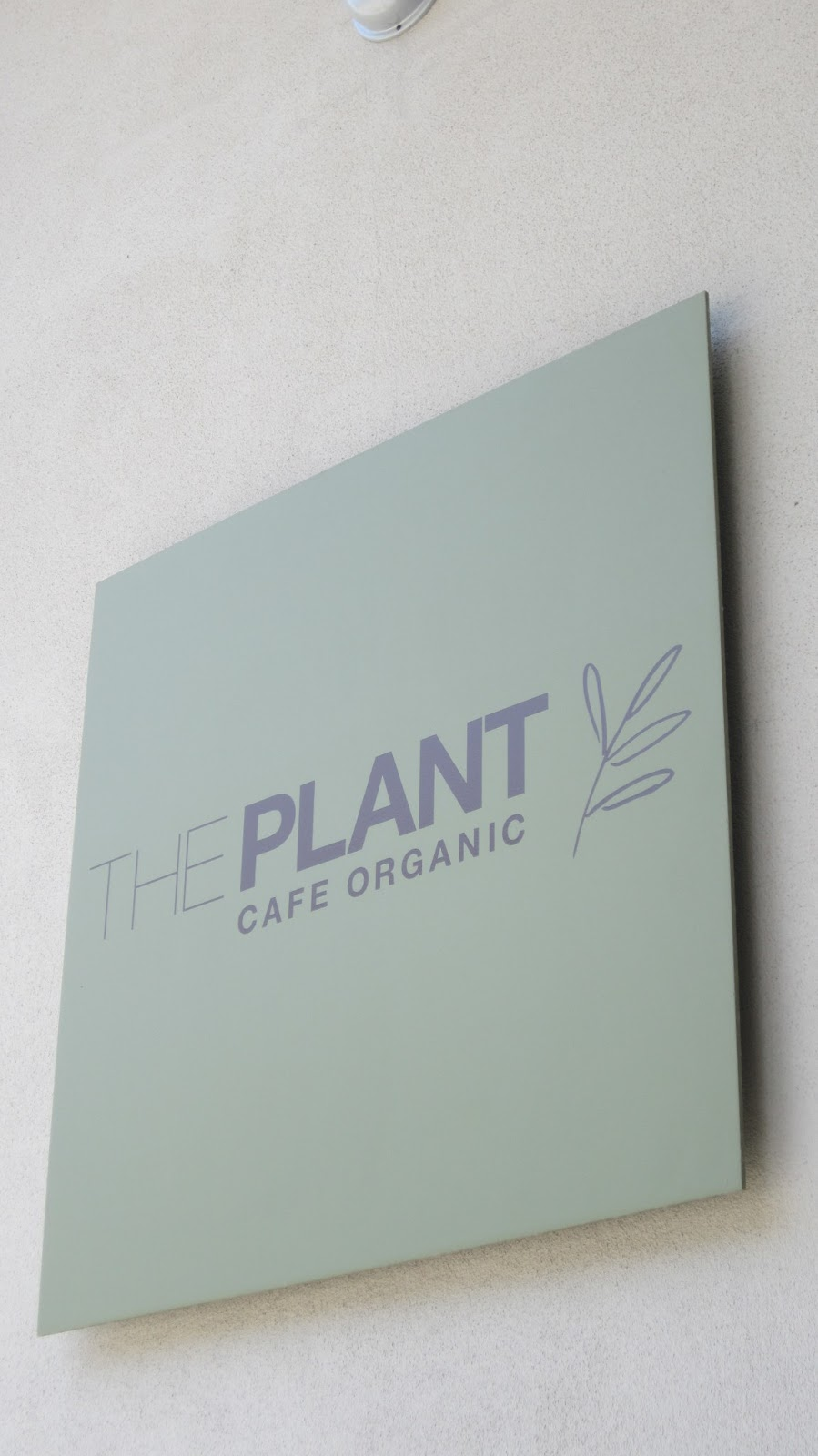 The Plant: Cafe Organic