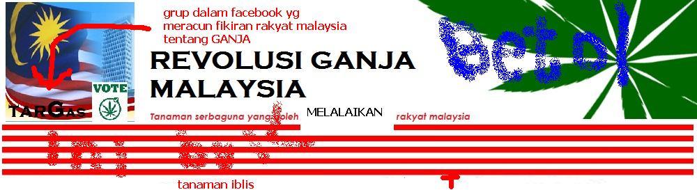 malaysian marijuana revolution
