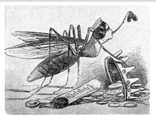 Lola como la mosca española