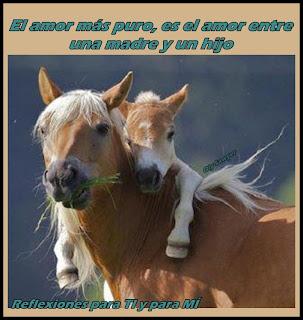 El amor más puro es el amor entre una madre y un hijo