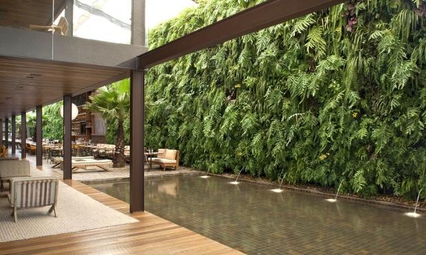 plantas para jardim vertical de garrafa pet:Monte um jardim vertical na sua casa