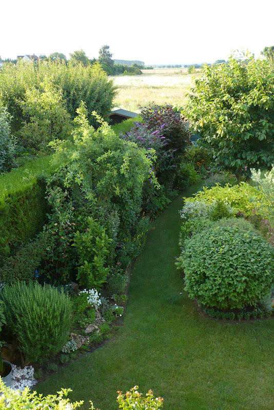 le jardin de pacalou le jardin prend de la hauteur. Black Bedroom Furniture Sets. Home Design Ideas