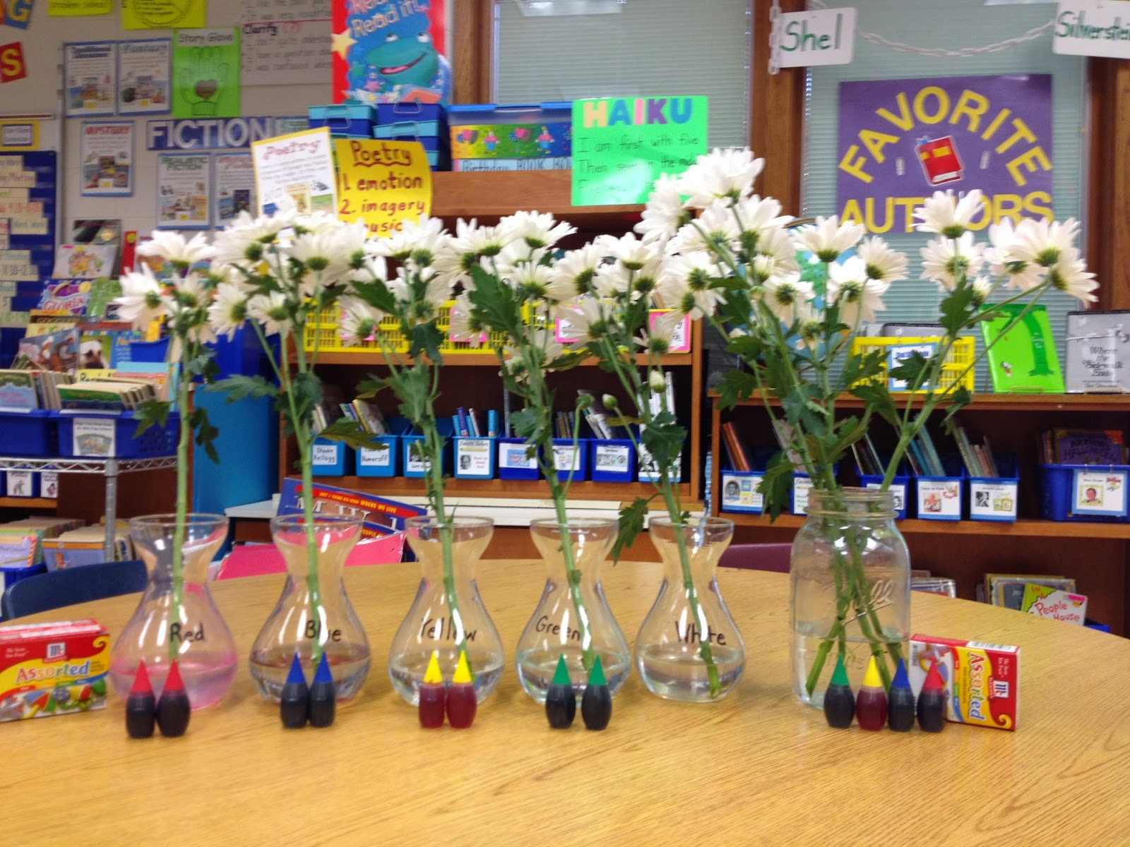 Mrs Edwards Class Experiment Coloring Flowers