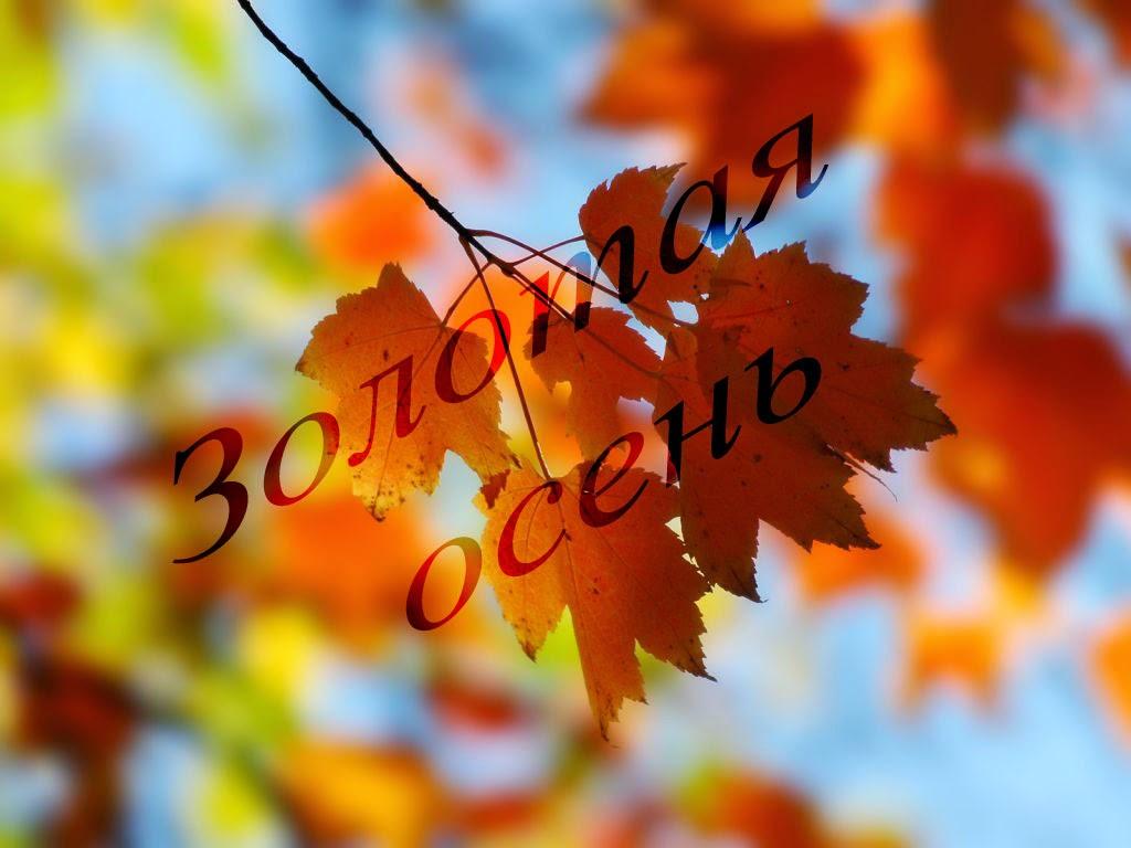 Галерея Золотая Осень