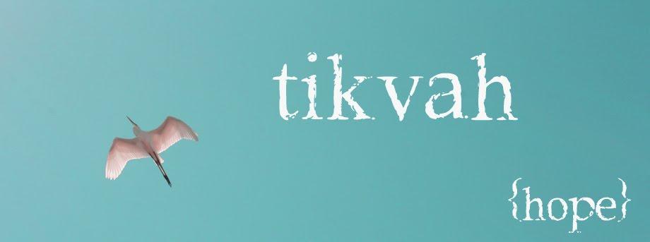 tikvah {hope}