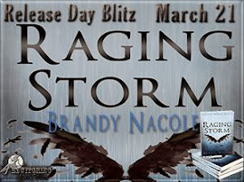 Raging Storm by Brandy Nacole