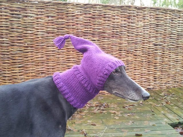 Knitting Patterns For Greyhound Hats : Crafting4Greyhounds: Greyhound Pixie Hats