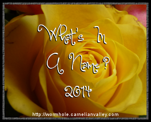 2014 What's in a Name? Challenge
