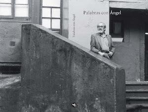 Palabras con Ángel (Libro homenaje de autores asturianos a Ángel González. AEA, 2008)