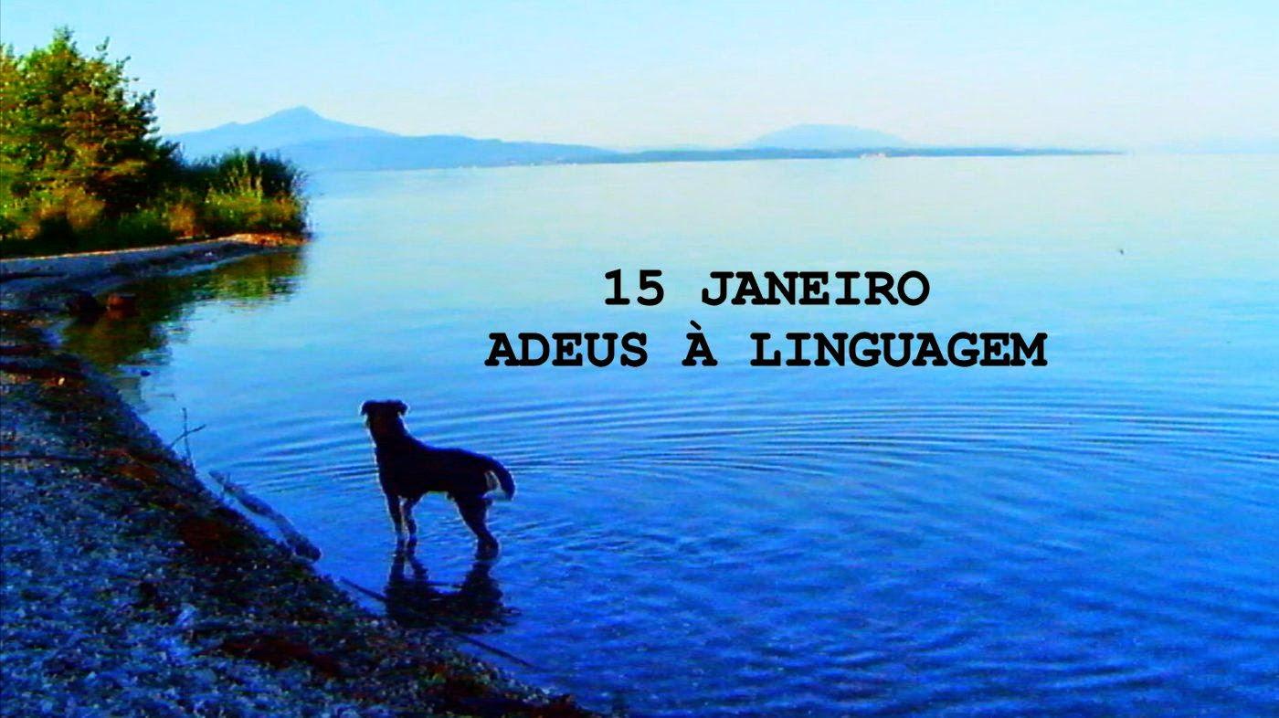 Adeus à Linguagem - Adieu au langage (2014) de Jean-Luc Godard