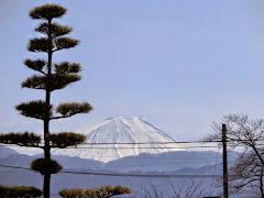 甲斐善光寺:富士の景色