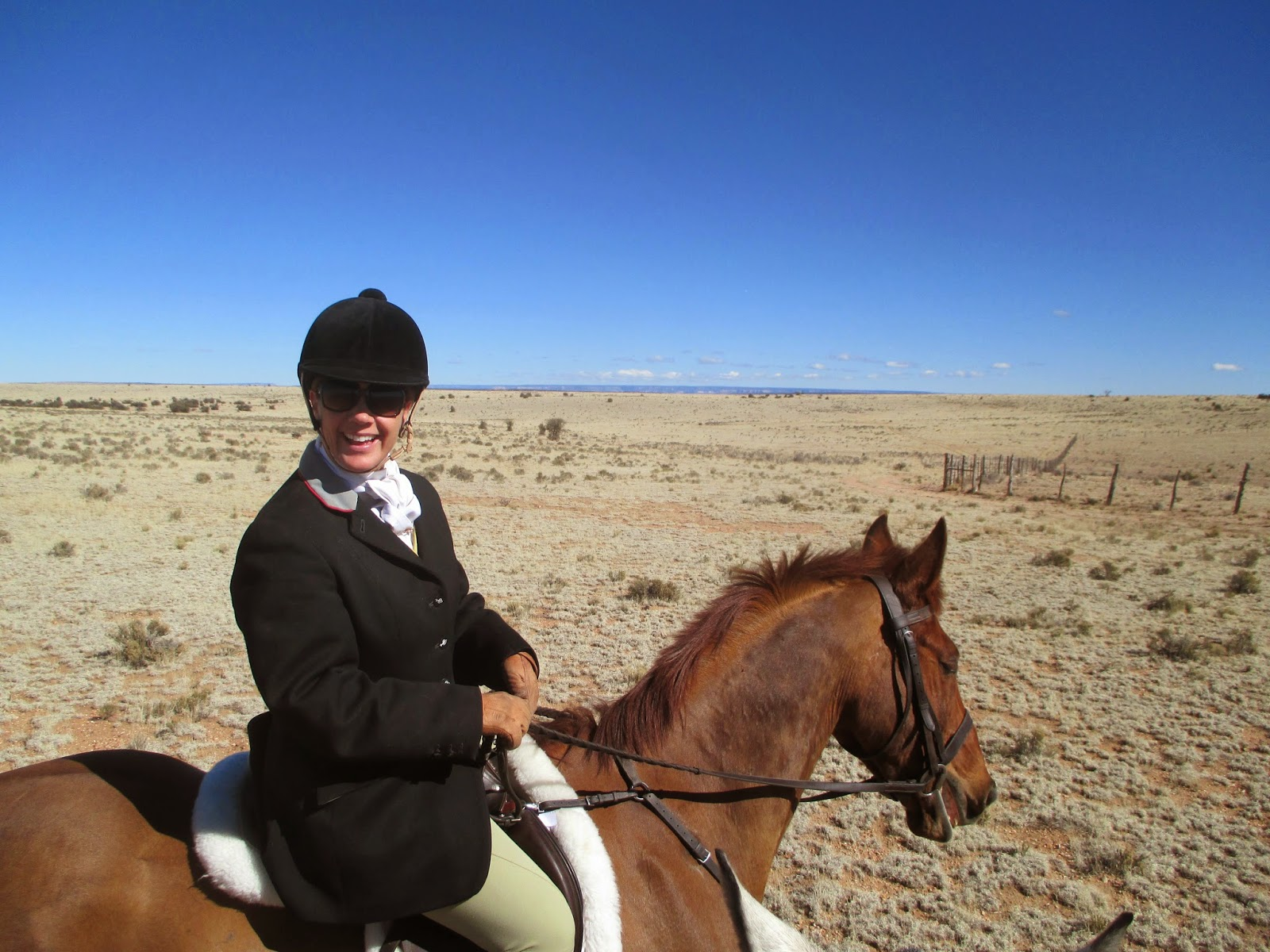 an english country girl in california across the wide prairie amy of the red rock hounds in reno nevada