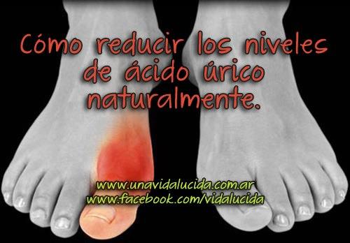 lista de alimentos altos en acido urico alimentacion para disminuir acido urico acido urico uricemia
