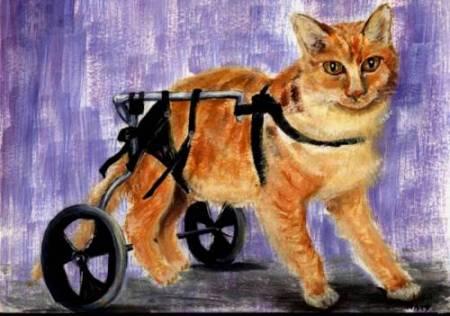 Adotar um animal abandonado é um ato de amor. Desenho de Nataly Zamperin - 14 anos