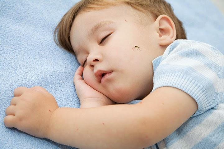 Bahaya Obat Nyamuk Bagi Bayi