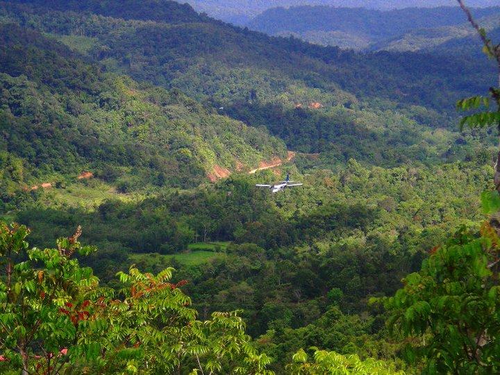 Hutan Rimba Malaysia