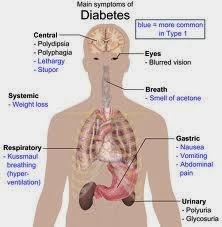 Ramuan Obat Penyembuh Penyakit Dibetes Melitus