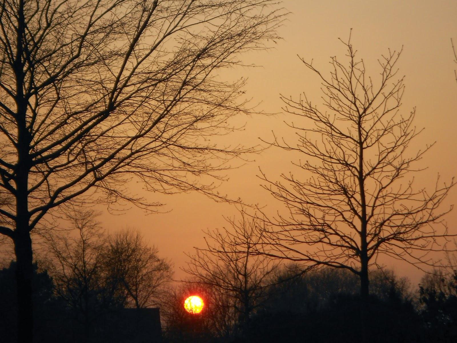 Sonnenuntergang im März