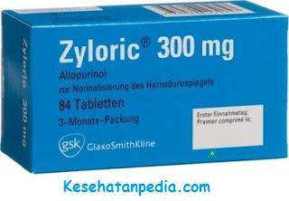 Obat Zyloric: Harga, fungsi & efek samping
