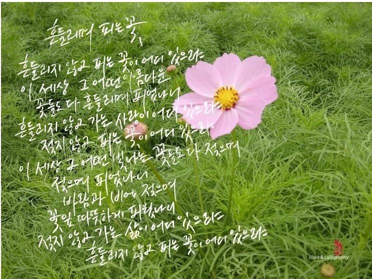 by kwon su jin
