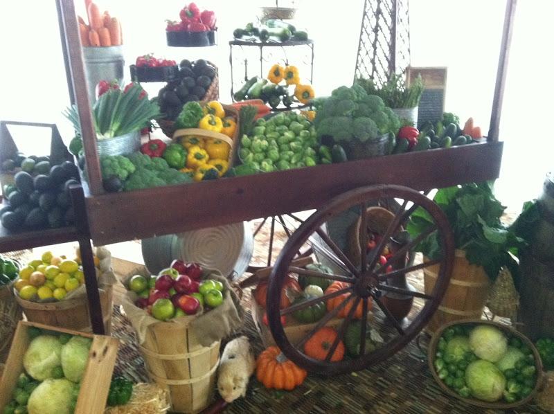 Organic Decor & Cabin Fever: Organic Decor