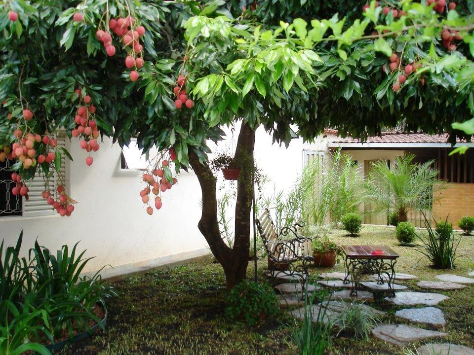 imagens de jardim horta e pomar : imagens de jardim horta e pomar:CASARIM PAISAGISMO by FLORESTARE: Tem um Jardim no Pomar