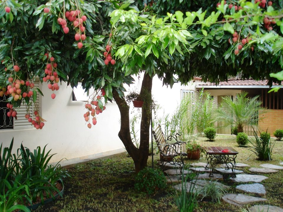 jardim horta e pomarCASARIM PAISAGISMO by FLORESTARE Tem um Jardim