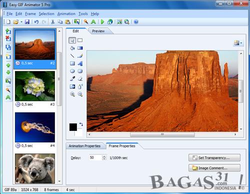 Easy GIF Animator Pro 5.02 + Crack 3